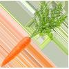 carrot-100x100